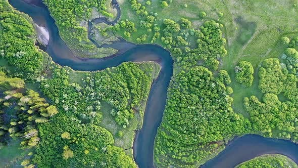 Thumbnail for South Fork of the Madison River winding through green meadow