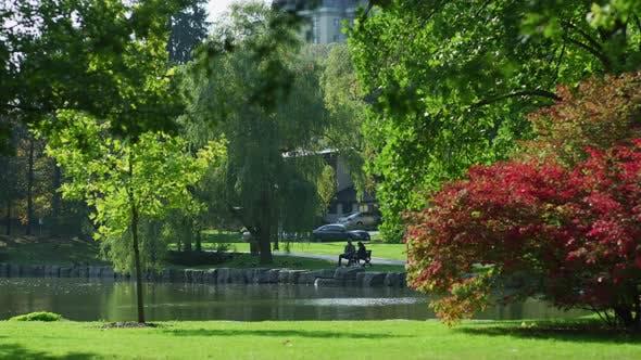 Thumbnail for Sitzen auf einer Bank neben einem Teich