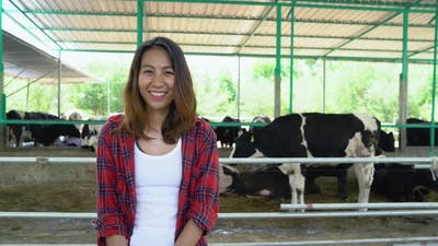 Beautiful asian woman or farmer with and cows in cowshed on dairy farm-Farming.