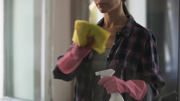 Thumbnail for Homemaker cleaning house, creating atmosphere of cleanliness and comfort