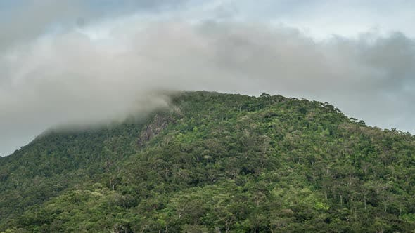 Thumbnail for Peak Mountain Khao Ra in the Clouds - the Highest Mountain on Koh Phangan Island, Thailand