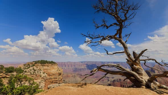 Cover Image for Time Lapse At The North Rim Of The Grand Canyon