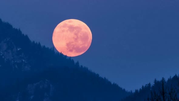 Thumbnail for Red Full Moon is Setting Down over Forest Mountains in Blue Winter Evening Nature