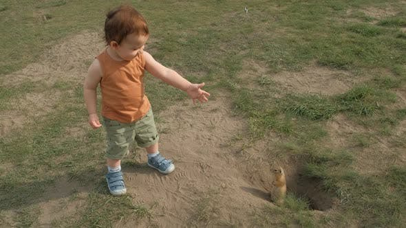 A Little Boy Happily Watching a Rodent in the Park