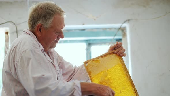 Thumbnail for Senior Beekeeper Works with Frames for Honey