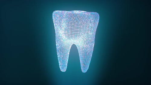 Hologram Screen of Molar Tooth