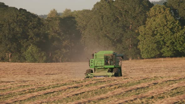 Thumbnail for Tracking shot of combine in field at sunset, Willamette Valley Oregon, USA.