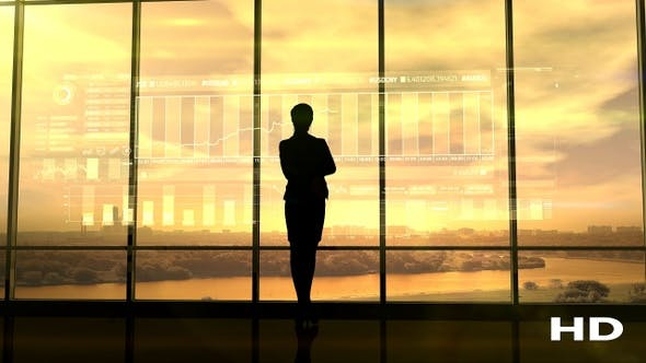 Thumbnail for Silhouette Of Business Woman And Stock Exchange Infographics HD