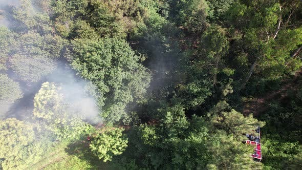 Firefighter Fire in Forest