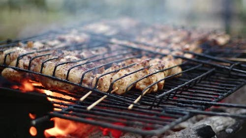 Delicious Chicken Meat On Barbecue Fire 6