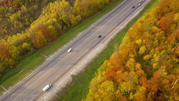 Thumbnail for Top View of Traffic on a Highway Surrounded By Bright Autumn Forest
