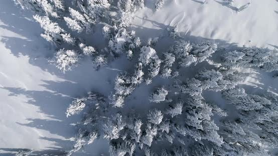 Thumbnail for Top Down Aerial Drone Angle Winter Snow Landscape Forest Mountain Range View