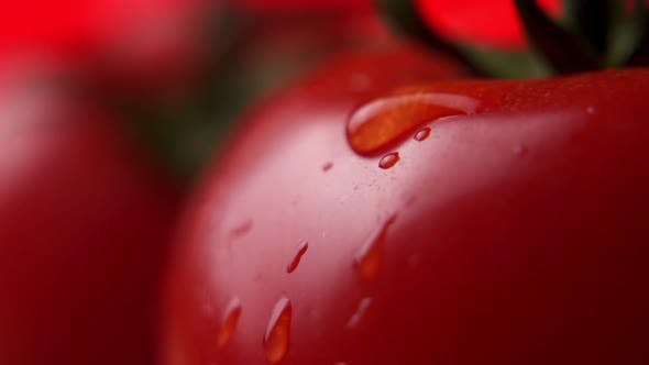 Bead of Water Rolling Off Side of Wet Tomato