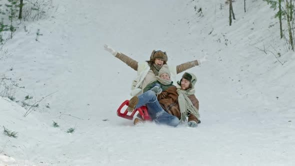 Cover Image for Family Spending Day in Forest in Winter