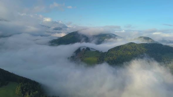 Aerial Above Clouds in Forest