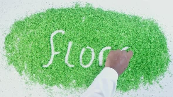 Indische Hand schreibt auf Green Flora