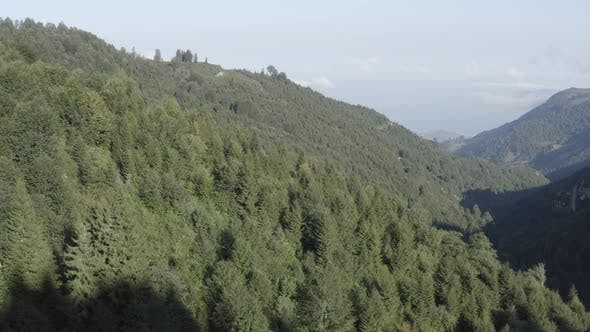 Thumbnail for Trabzon City Forest And Mountains Aerial View 5
