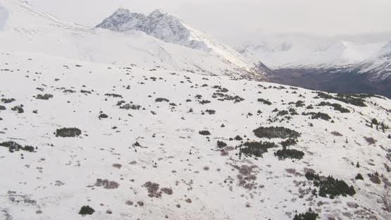 Lufthubschrauber durch Alaskan-Tal über Bäume und Fluss in Richtung Berge, Drohne aufnahmen