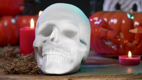 Close Up of White Scary Skull on a Table