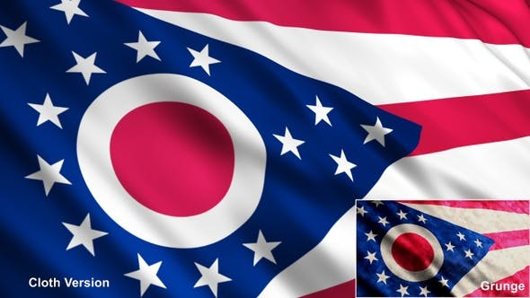 Cover Image for Ohio State Flags