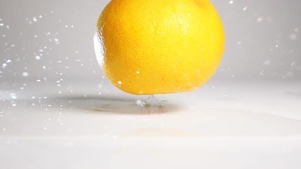 Thumbnail for Orange Grapefruit Fall on White Surface