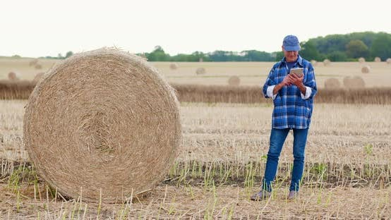 Thumbnail for Agriculture Farmer Working on Field on Digital Tablet Computer