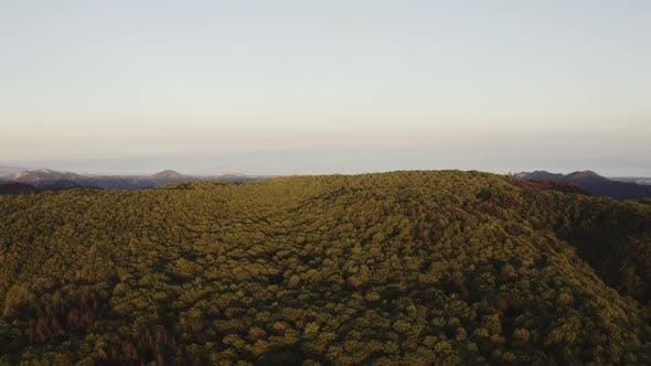 Aspromonte mountain Park in Calabria