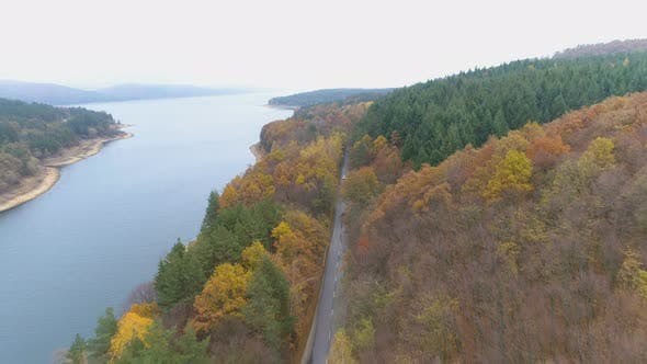 Thumbnail for Aerial View of Beautiful Mixed Forest in Autumn Colors. Asphalt Road Crossing the Forest