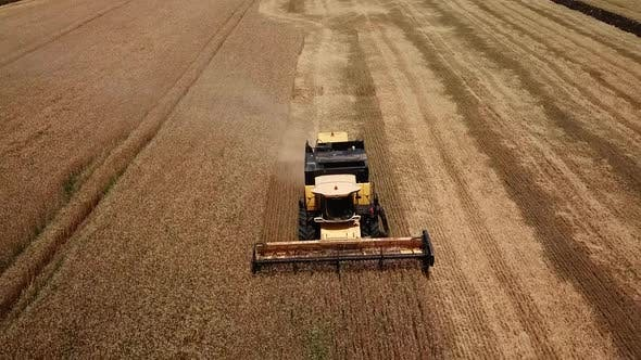 Thumbnail for Drone Footage of Golden Fields and Combine Harvester