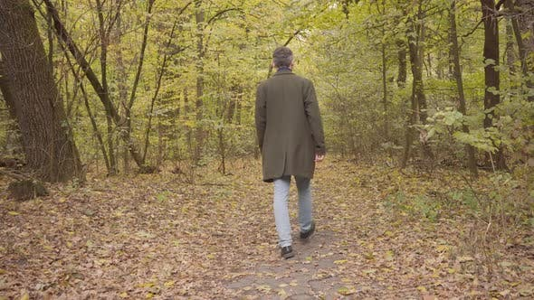 Thumbnail for Back View of an Adult Caucasian Man Walking Away in the Forest. Guy in Casual Clothes Enjoying Calm