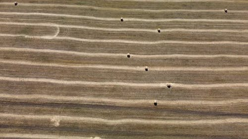 Hay Rolls on the Field Aerial View