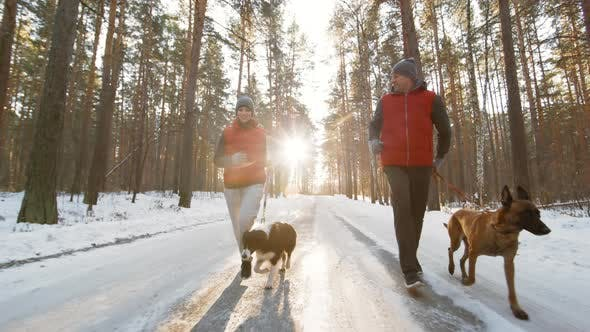 Thumbnail for Man and Woman Jogging with Dogs in Forest
