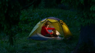 A Man in a Tent in the Night Forest
