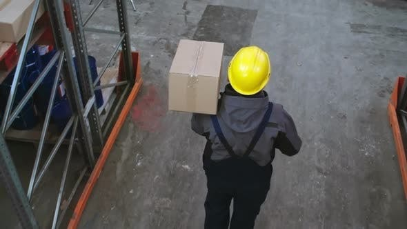 Thumbnail for Storehouse Worker Carrying Box