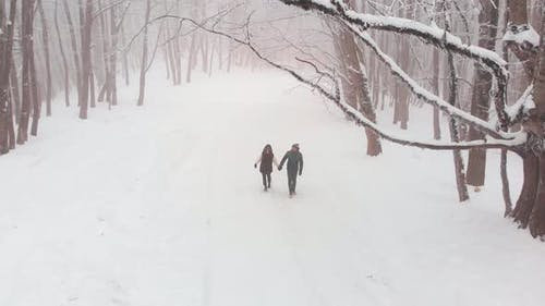 Front View Couple Walking In Winter Forest
