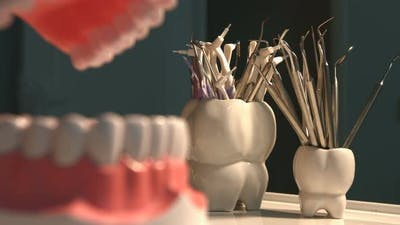 Many Dental Instruments and Jaw