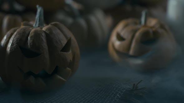 Thumbnail for Mystery Fog And Halloween Pumpkins