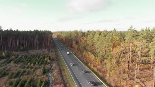 Cars and trucks on road with colorful trees