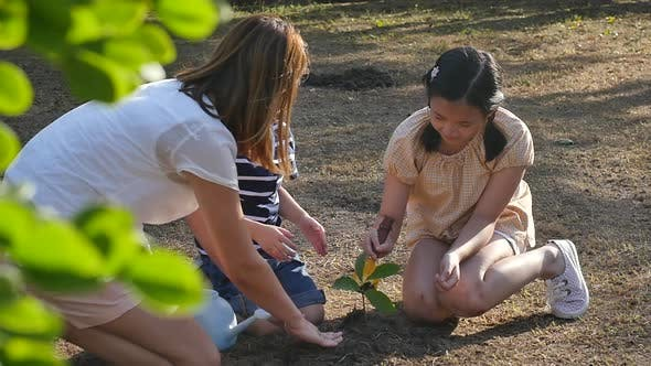 Asian Mother And Children Planting Young Tree In Black Soil Together Slow Motion