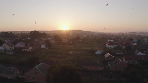 Thumbnail for Aerial Drone View Over Old Village at Sunrise. Swallows Birds Fly in Large Swarms