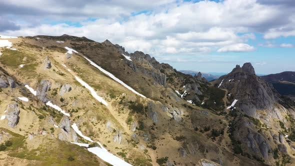 Wildlife Carpathia Mountains