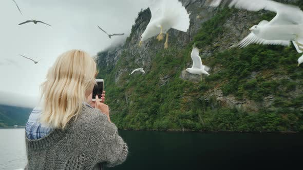 Thumbnail for The Tourist Photographs Beautiful Fjords and Seagulls That Fly Nearby. Cruise on the Fjords of
