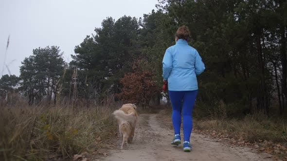 Cover Image for Female Trail Runner with Pet Jogging in the Wood