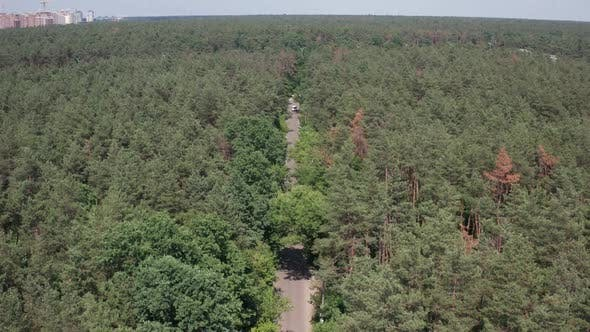 Thumbnail for Drone View of Car Riding Along Forest Road