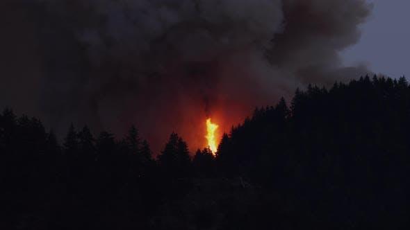 Thumbnail for Forest Fire Near Portland Oregon