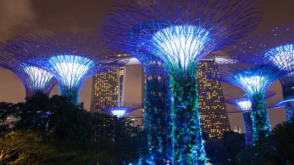 Thumbnail for Singapore Supertree Grove Nacht Bewölkt Zeitraffer