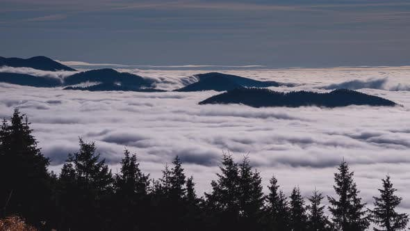 Thumbnail for Foggy Clouds Moving Fast in Forest Mountain Valley Nature