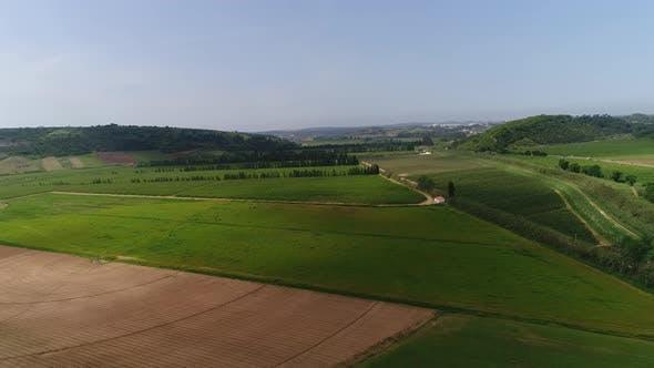 Thumbnail for Fliegen über grüne Felder
