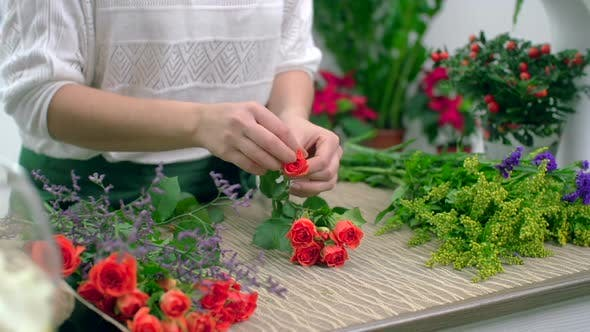 Thumbnail for Preparing Roses for Bouquet