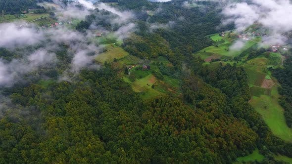 Cover Image for Village In Forest Aerial